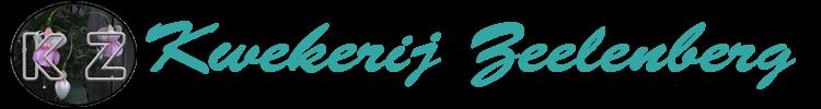 Kwekerij Zeelenberg - Een kwekerij gespecialiseerd in fuchsia's en pelargoniums